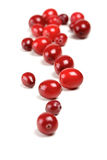 Cranberries Stock Photo