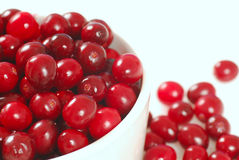 Cranberries in a white bowl Royalty Free Stock Image
