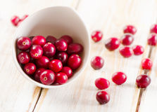 Cranberries in a white bowl Stock Images