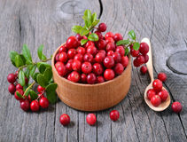 Cranberries in wooden bowl Royalty Free Stock Images