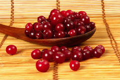 Cranberries in a wooden spoon Royalty Free Stock Images