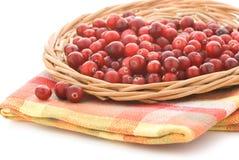 cranberriesmagasingnäggande Royaltyfri Fotografi