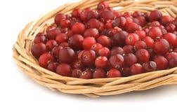cranberriesmagasingnäggande Arkivbilder
