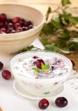 cranberriesyoghurt arkivbild