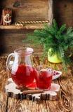 Cranberry świeży sok Kompot Gorący boże narodzenia piją od jagod z cynamonem i gwiazdowym anyżem fotografia stock