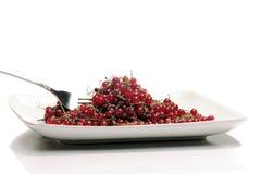 Cranberry Royalty Free Stock Photos