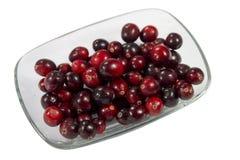 cranberry Stock Afbeelding