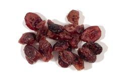 cranberry obraz stock