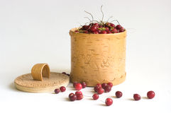 The Cranberry. Image in a vessel from a birch bark Stock Image