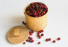 The Cranberry. Image in a vessel from a birch bark Royalty Free Stock Photos