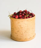 The Cranberry. Image in a vessel from a birch bark Royalty Free Stock Images