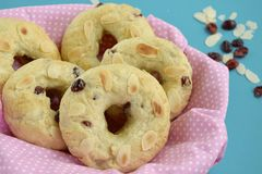 Cranberry almond bagels. Homemade baked cranberry almond bagels Stock Photos