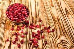 cranberry Amerikaanse veenbessen op glay Plaat Houten Achtergrond stock fotografie