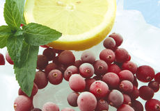 Cranberry And Ice Royalty Free Stock Photo