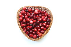 Cranberry in a basket Stock Photography