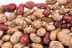 Cranberry beans Stock Images