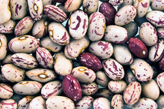 Cranberry beans as background Royalty Free Stock Photo