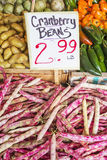 Cranberry Beans Royalty Free Stock Images