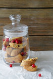 Cranberry biscotti Stock Images