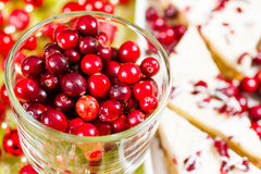 Cranberry bliss bar Stock Photography
