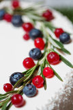 Cranberry and blueberry on Christmas cake Stock Image
