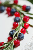 Cranberry and blueberry on Christmas cake Royalty Free Stock Photo