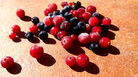 Cranberry and blueberry background Stock Photography