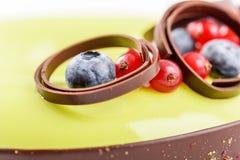 Cranberry And Blueberry Fruit Cake Stock Image