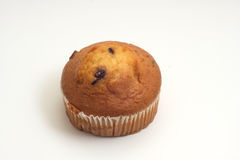 Cranberry Bran Muffin Royalty Free Stock Image