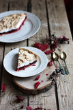 Cranberry cake with meringue. Cranberry winter cake with meringue Royalty Free Stock Image