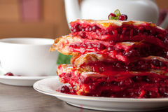 Cranberry Cake Royalty Free Stock Photos