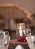 Cranberry Candle Centerpiece Stock Photos