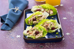 Cranberry chicken salad Royalty Free Stock Photo