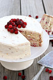 Cranberry Christmas Cake Royalty Free Stock Photos