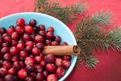 Cranberry on Christmas Royalty Free Stock Photos