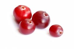 Cranberry close-up Royalty Free Stock Image