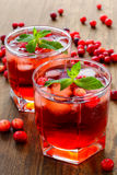 Cranberry cocktail with ice and mint Stock Photography