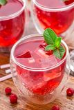 Cranberry cocktail with mint garnish. Stock Photos