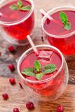 Cranberry cocktail with mint garnish. Royalty Free Stock Photo
