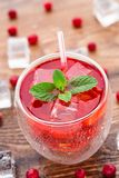 Cranberry cocktail with mint garnish. Royalty Free Stock Photography