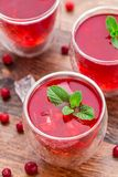 Cranberry cocktail with mint garnish. Stock Photography