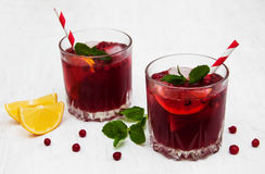 Cranberry cocktail with mint Stock Images