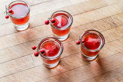 Cranberry cocktail shot with vodka. Beverage Concept Royalty Free Stock Photos