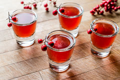Cranberry cocktail shot with vodka. Beverage Concept Royalty Free Stock Photo