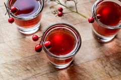 Cranberry cocktail shot with vodka. Beverage Concept Stock Photos
