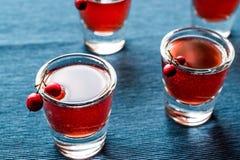 Cranberry cocktail shot with vodka. Beverage Concept Stock Images