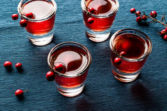 Cranberry cocktail shot with vodka. Beverage Concept Royalty Free Stock Photography
