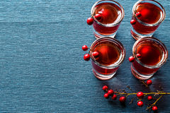 Cranberry cocktail shot with vodka. Beverage Concept Stock Photo