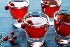 Cranberry cocktail shot with vodka. Beverage Concept Stock Photography