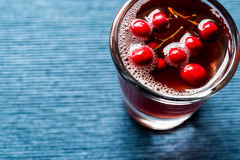 Cranberry cocktail shot with vodka. Beverage Concept Royalty Free Stock Images